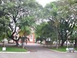 imagem de Turvo Santa Catarina n-19