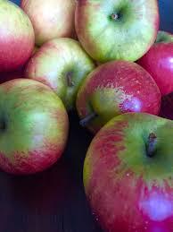 homemade unsweetened applesauce sugar