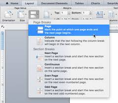 How Do I Get Rid Of A Blank Page In Word 2008