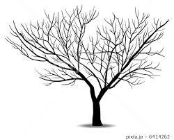 冬の木のイラスト素材 6414262 Pixta