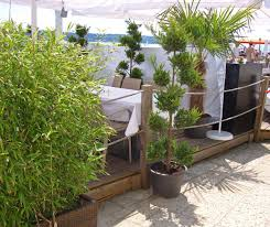 Kreative Und Originelle Ideen Wie Sie Mit Bambus Balkon Sichtschutz