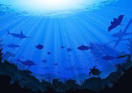 Ocean Background Download Free Vectors Clipart Graphics