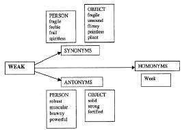 Whispered Synonym Word Relationships Synonyms Antonyms