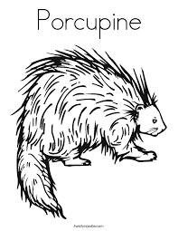 Small Picture Porcupine Coloring Page Twisty Noodle