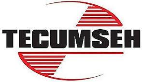 Genuine Tecumseh Carburetor 640349 Certain Lh318sa Engines | eBay