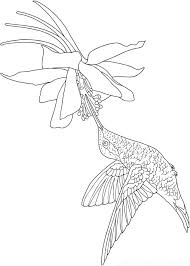 d609f8cd6f761cc123f41e4843e4b175 adult coloring coloring books 249 best images about coloring pages birds on pinterest on creative coloring birds