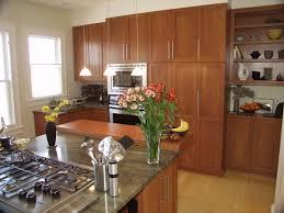 Birch Wood Kitchen Cabinets Birch Wood Kitchen Cabinetsjpg