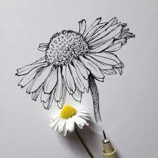 Colour Pencil Flower GCSE by KaleidoscopeEyes   on DeviantArt SlideShare