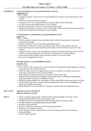 International Sales Representative Sample Resume International Sales Representative Resume Samples Velvet Jobs 8