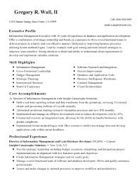 Database Developer Sample Resume Resume Database Developer Resume Hd Wallpaper Images Senior Database 24