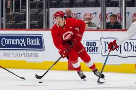 Detroit Red Wings Depth Chart Progress Report On Seth Barton And The Red Wings Other