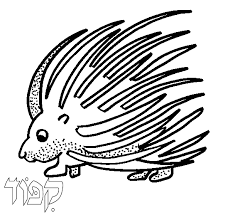 Small Picture Torah Tots Alef Bet PORCUPINE Coloring page