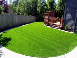 artificial turf yard. Beautiful Yard Boscololawnsyntheticturfnorthwest Intended Artificial Turf Yard