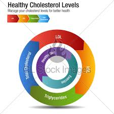 Cholesterol Chart Total Blood Cholesterol Hdl Ldl Triglycerides Chart Gl