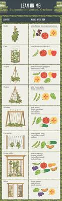 Plants For Kitchen Garden 17 Best Ideas About Vertical Vegetable Gardens On Pinterest