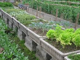 Small Picture Small Backyard Vegetable Garden Design Ideas Best Garden Reference