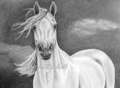 42 Beste Afbeeldingen Van Schetsen Pencil Drawings