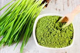 <b>Organic</b> Wheatgrass Powder   Z-Company   <b>Natural</b> Health Food ...