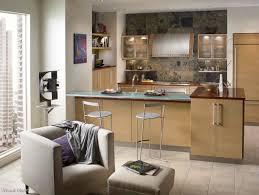 Uptown Loft Better Kitchens Chicago - Better kitchens
