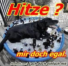 ᐅ Hitze Bilder Hitze Gb Pics Gbpicsonline