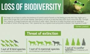 Species Diversity Definition Ess Topic 3 3 Threats To Biodiversity Amazing World Of Science