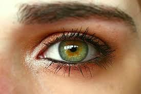 green eye makeup ideas from insram