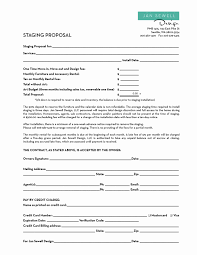 Home Staging Business Plan Template – Docs Template