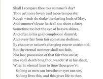 on shakespeare sonnet  sonnet 73 essays