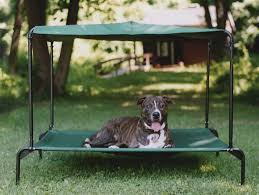 Best Wayfair Dog Beds Of Outdoor Dog Bed W Canopy Raised Pellos ...