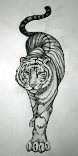 Animal Tattoos Tiger Tattoos Designs Ideas Meaning Tattoo Me Now