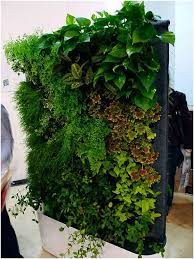 great living wall diy vertical garden 17 best ideas about living walls on vertical garden