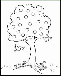 4 Bomen Kleurplaten 66672 Kayra Examples