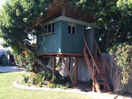simple tree house pictures. Simple Tree House Pictures YouTube