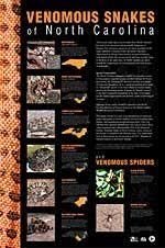 Venomous Snakes And Spiders Of Nc Poster Photos Info