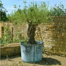 the circular copper garden planter