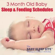 3 Month Old Baby Sleep And Feeding Schedules The Baby