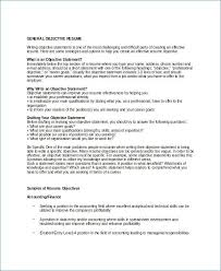 Title Clerk Sample Resume Adorable What Is Resume Title From Resume Position Desired Free Resume