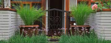 Small Picture Garden Design Sydney Impressions Landscape Design