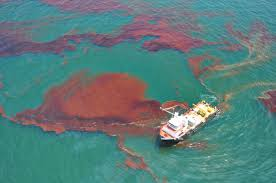 insights into editorial tarred by the oil spill insights