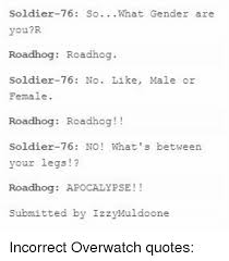 Overwatch Quotes 61 Best Soldier24 So What Gender Are YouR Roadhog Roadhog Soldier24 No