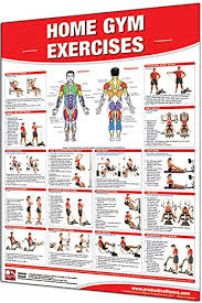 Multi Gym Wall Chart Amazon Com Iron Company Productive Fitness Laminated