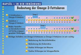 Wo omega 3 fettsäuren