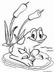 Раскраски про лягушку
