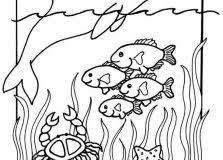 mirror coloring pages for kids. Coloring Pages For Kids Sea Animals Mirror
