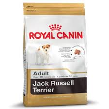 <b>Royal Canin Jack Russell</b> Terrier Adult at bitiba!