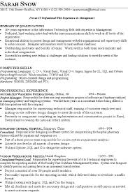 It Consultant Resume Example Resume Examples And Sample Resume