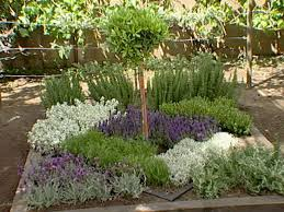 Small Picture How to Make an Herbal Knot Garden how tos DIY