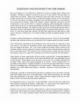 word essay format hypothesis if then format online essay 500 word essay format