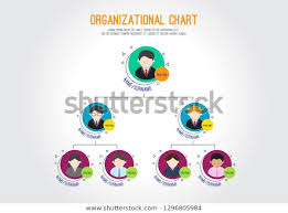 Organizational Chart Corporation Business Hierarchy Vector