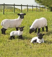 garden animal statues. Plain Statues Exclusive Suffolk Sheep Resin Garden Statue For Animal Statues A
